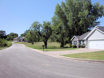 Carterville MO Residential Lots & Land For Sale: $60,000