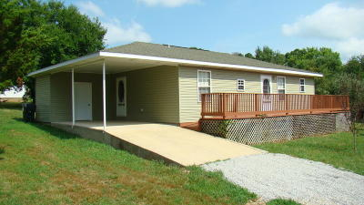Summersville Single Family Home For Sale: 576 Cook Drive