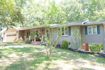 Forsyth Single Family Home For Sale: 267 Dickens Circle