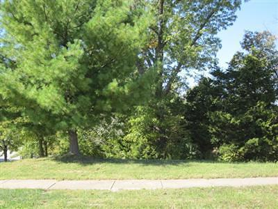 Springfield Residential Lots & Land For Sale: 5329 South Whitehaven Drive