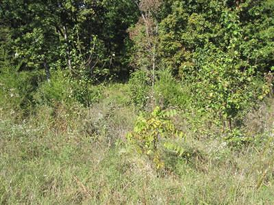 Springfield Residential Lots & Land For Sale: 5227 South Whitehaven Drive