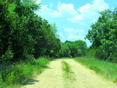 Ridgedale Residential Lots & Land For Sale: 415 Juniper Lane
