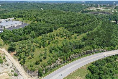 Branson Residential Lots & Land For Sale: 1901 Shepherd Of The Hills Expwy