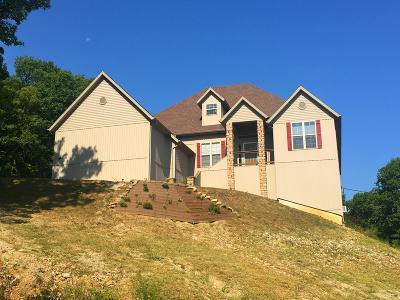 Branson Single Family Home For Sale: 1142 Noland Road