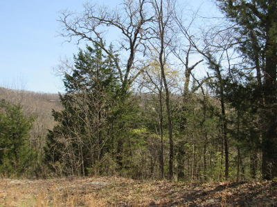 Hollister Residential Lots & Land For Sale: Tbd Skylee Drive
