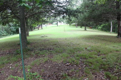 Reeds Spring Residential Lots & Land For Sale: Tbd Workman And Tower