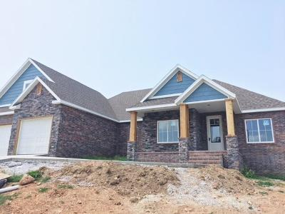 Nixa Single Family Home For Sale: 1419 Rich Hill Circle Drive