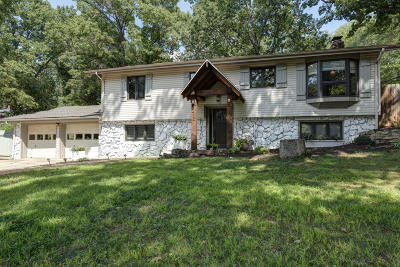 Ozark Single Family Home For Sale: 1412 South 3rd Avenue