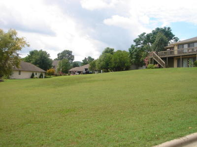 Branson  Residential Lots & Land For Sale: 1691 Pointe Royale Drive