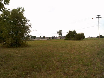 Marionville Residential Lots & Land For Sale: Tbd Hwy 60 & Fr 1235
