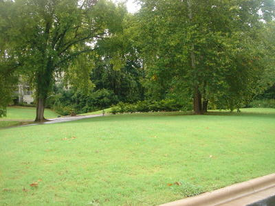 Branson  Residential Lots & Land For Sale: 163 Sherwood Drive