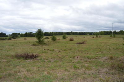 Strafford Residential Lots & Land For Sale: North Farm Rd 227