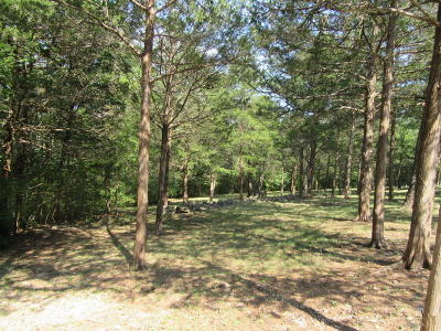 Stone County, Taney County Residential Lots & Land For Sale: Tbd Craig Road