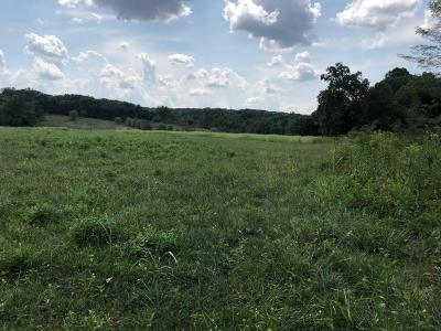 Cross Timbers MO Residential Lots & Land For Sale: $132,000