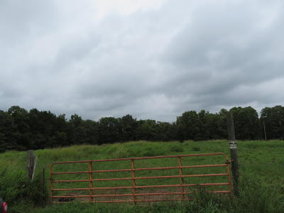 Cedar Creek Residential Lots & Land For Sale: Tbd Ab Fine