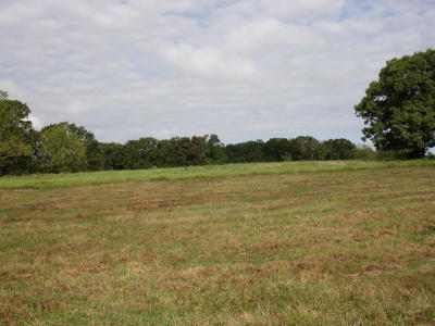 Osceola Single Family Home For Sale: 8201 Southeast 71 Road