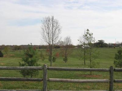 Rogersville Residential Lots & Land For Sale: 4520 South Farm Rd 189