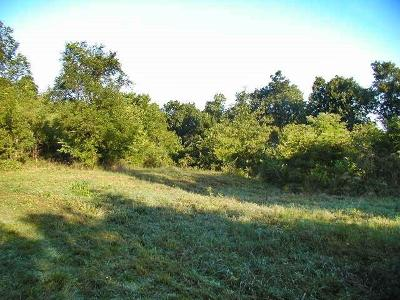 Willard Residential Lots & Land For Sale: 6791 State Hwy Hh