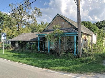 Stone County Commercial For Sale: 8482 State Hwy 76