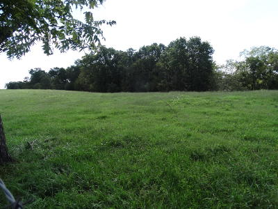Residential Lots & Land For Sale: Tract 1 Sycamore Ranch Road