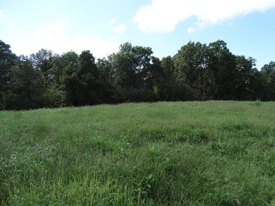 Residential Lots & Land For Sale: Tract 2 Sycamore Ranch Road