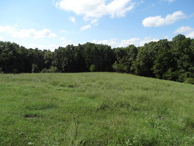 Residential Lots & Land For Sale: Tract 4 Sycamore Ranch Road