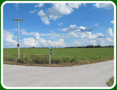 Ozark Residential Lots & Land For Sale: Tract-1 Collins Road