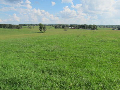 Ozark Residential Lots & Land For Sale: Tract-2 Collins Road