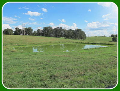 Ozark Residential Lots & Land For Sale: Tract-3 Collins Road