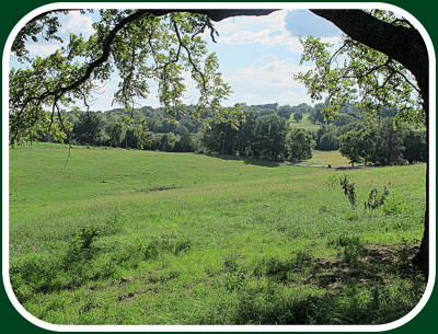 Ozark Residential Lots & Land For Sale: Tract-5 Tennessee Road
