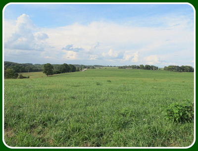 Ozark Farm For Sale: Tract-7 Tennessee Road