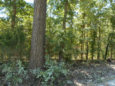 Houston MO Residential Lots & Land For Sale: $5,500