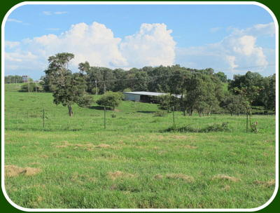 Ozark Farm For Sale: Tract-9 Kentucky Road