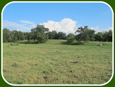 Ozark Farm For Sale: Tract-10 Kentucky Road
