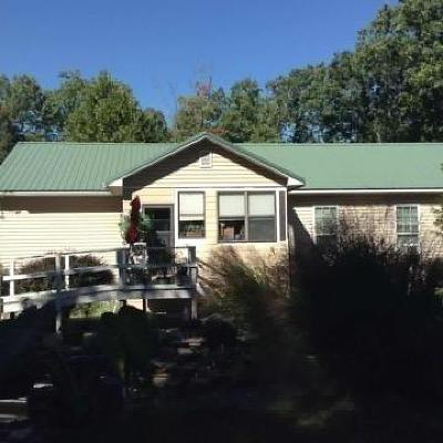 Galena MO Single Family Home For Sale: $165,000