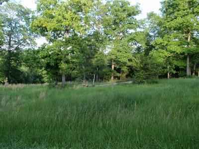 Saddlebrooke MO Residential Lots & Land For Sale: $39,900