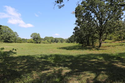 Residential Lots & Land For Sale: Tbd Highway Bb #Lot #15