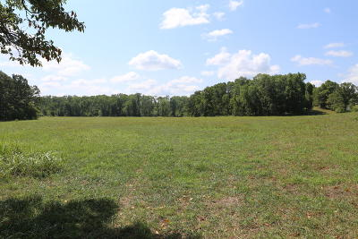 Residential Lots & Land For Sale: Tbd Highway Bb #Lot #16