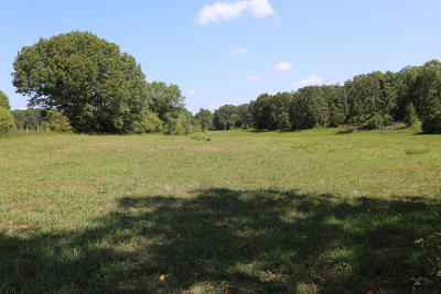 Residential Lots & Land For Sale: Tbd Hwy Bb #Lot 17