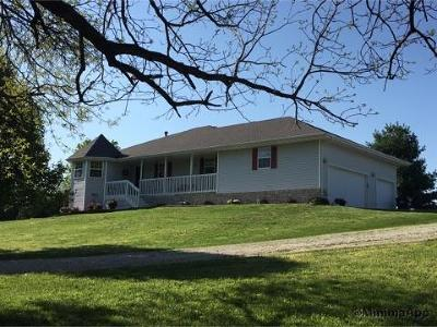 Rogersville Single Family Home For Sale: 5254 East Farm Rd 192