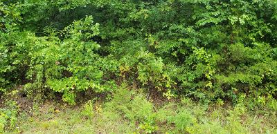 Residential Lots & Land For Sale: Lot 46 West Marion Lane