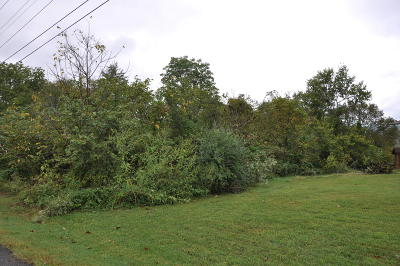 Forsyth Residential Lots & Land For Sale: 384 Summit Ridge Drive