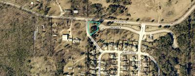 Residential Lots & Land For Sale: 177 West Marion Lot 50 Lane