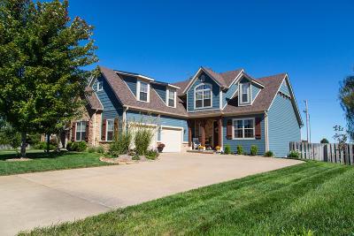 Ozark MO Single Family Home For Sale: $300,000