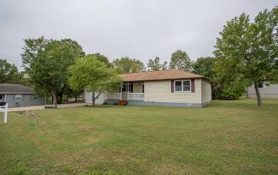 Branson Single Family Home For Sale: 168 White Drive