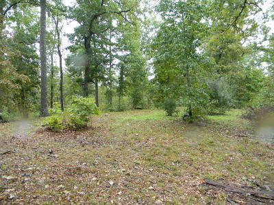 Strafford Residential Lots & Land For Sale: North Farm Rd. 249
