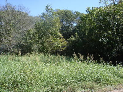 Noel MO Residential Lots & Land For Sale: $30,000