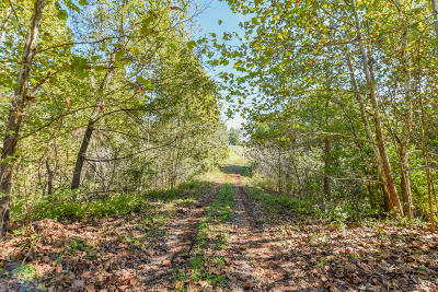 Nixa Residential Lots & Land For Sale: 1327 West Peyton Place