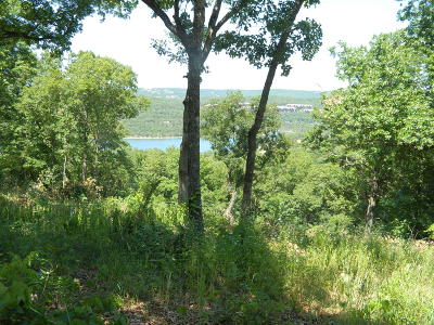 Ridgedale MO Residential Lots & Land For Sale: $240,000