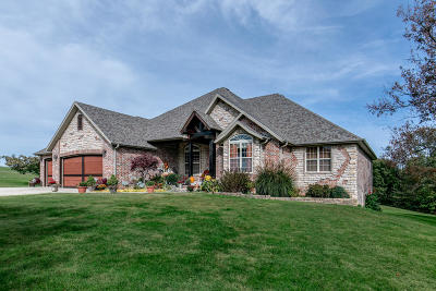 Ozark MO Single Family Home For Sale: $525,000